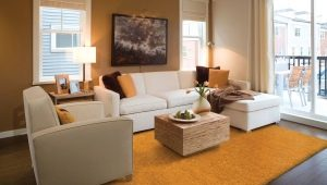 Plain carpets: ideas of combinations in the interior