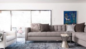 Pros and cons of polypropylene carpets