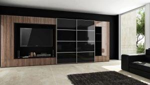 लिविंग रूम में अलमारियाँ पूरी दीवार का आकार: प्लेसमेंट की विशेषताएं