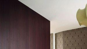 छिपे दरवाजे: डिजाइन सुविधाओं