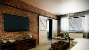 Uși moderne în stil loft