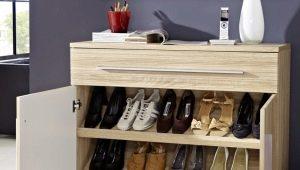 Armoires à chaussures dans le couloir: un détail important à l'intérieur