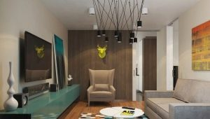 Ontwerp een appartement met een slaapkamer van 50 vierkante meter. m: voorbeelden van interieurs