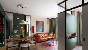Design appartement van 40 vierkante meter.m: voorbeelden van interieurs