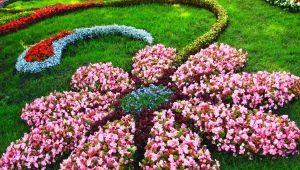 लैंडस्केप डिजाइन फूल उद्यान: स्टाइलिश और सुंदर समाधान