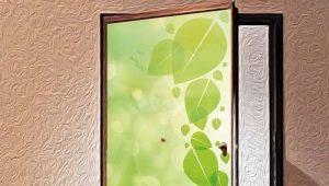 दरवाजे पर स्टिकर: डिजाइन विकल्प