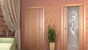 आंतरिक दरवाजे के लिए मौजूदा शैलियों का अवलोकन