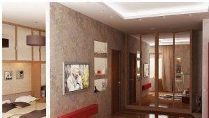 Studio dans différents styles: exemples de design