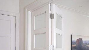 आंतरिक दरवाजे तह - इंटीरियर में एक कॉम्पैक्ट समाधान