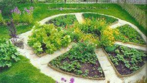 تصميم الحديقة والحديقة في المنزل الريفي الصيفي