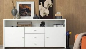 Long chests for the living room: design models and tips on choosing