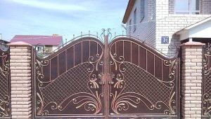 Comment choisir une porte: une caractéristique des vues populaires