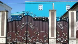 Articles forgés pour la clôture: idées originales
