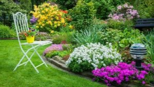 Beautiful flower beds: features of planning in landscape design