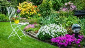 Vackra blomsterbäddar: funktioner i planering i landskapsdesign