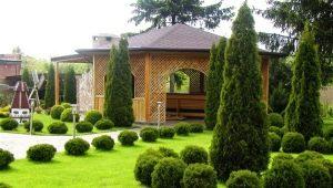 Landscape design: the subtleties of landscaping site