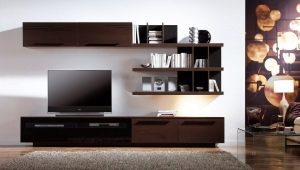 Furniture for TV in the living room: the features of choice
