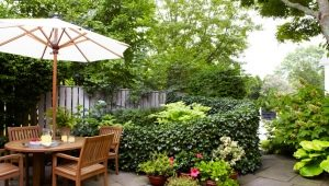 We design landscaping for a small suburban area