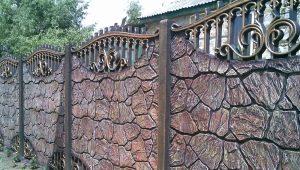 Clôture en pierre: designs spéciaux et belles options de design