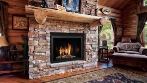 Pig-iron fireplace insert: device features