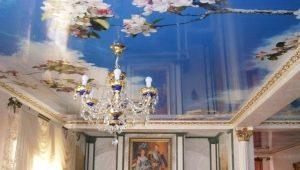 Plafonds tendus à deux niveaux à l'intérieur: caractéristiques de conception