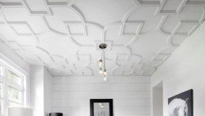 Plafonds de gypse dans la décoration intérieure
