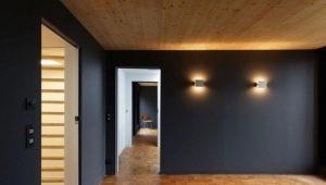 Décoration murale en plaques de plâtre dans une maison en bois: travaux d'installation