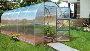 Country greenhouse 2DUM: characteristics and subtleties of installation