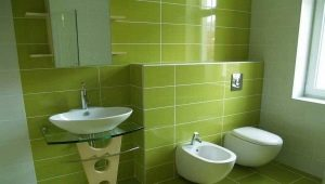 How to choose a tile for a toilet?