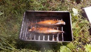 Hur man gör ett rökhus för fisk hemma?
