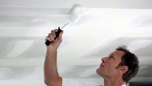 Vilken typ av färg för taket i lägenheten är bättre?