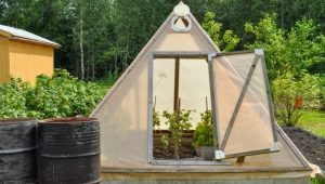 Features of making greenhouses from scrap materials
