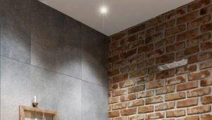 Funktioner av designen av toaletter i stil med loft