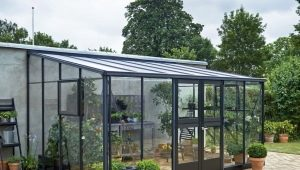 Features of glass greenhouses
