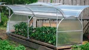 Butterfly greenhouse: design features of manufacturing