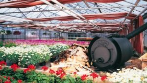 Furnaces for greenhouses: the types and features of the device