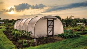 Film Greenhouse: comment choisir?