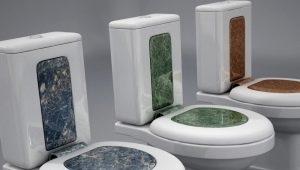 Hur man väljer ett toalettsits?