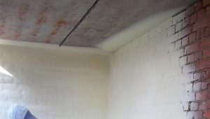 Paint-insulation: description and specifications