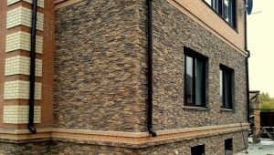 Facing brick for the facade: types of material and features of its choice
