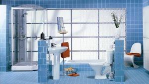 VVS för badrummet: typer, urvalskriterier och platsalternativ