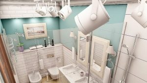 Combined bathroom in Khrushchev: examples of design
