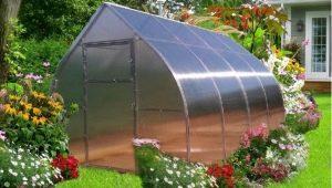 Greenhouse Droplet: caractéristiques et installation