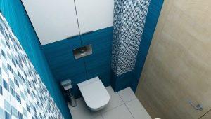 Den subtilitet av inredningen toalett