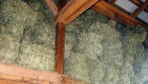 How to build a goat shed?