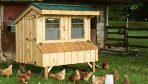 How to make a simple chicken coop in the country?