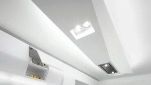 16 वर्ग मीटर के रसोईघर के रहने वाले क्षेत्र का डिजाइन और डिज़ाइन। मीटर