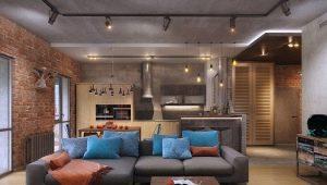Design kök-vardagsrum på 20 kvadratmeter. m
