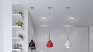 एक बार के साथ रसोई-लिविंग रूम डिजाइन