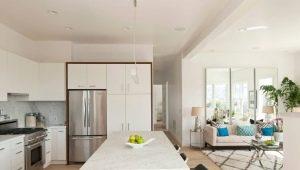 रहने वाले कमरे के साथ संयुक्त रसोई के रूपों और डिजाइन सुविधाओं